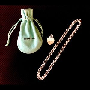 Tiffany & Co necklace & pendant charm
